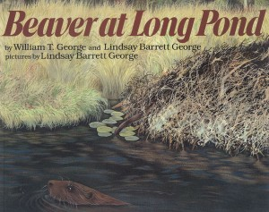 Beaver at Long Pond illustrated by Lindsay Barrett George
