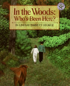 In the Woods: Who's Been Here? by Lindsay Barrett George